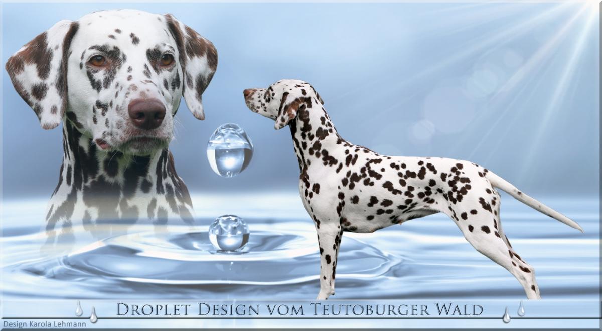 Datenblatt Droplet Design vom Teutoburger Wald