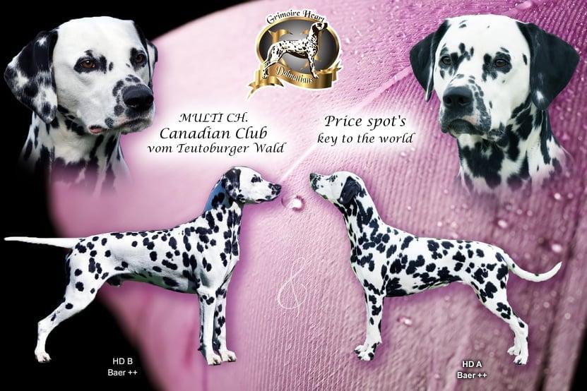 Deckung: Canadian Club vom Teutoburger Wald und Price-spot's Key to the World