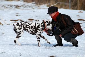 ... der freudig heramkommende Hund, so folgt sogleich die Belohnung