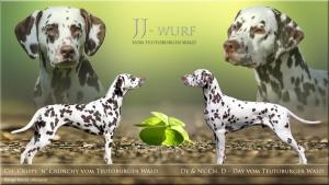JJ-Wurf vom Teutoburger Wald - Crispy 'n' Crunchy vom Teutoburger Wald und D-Day vom Teutoburger Wald