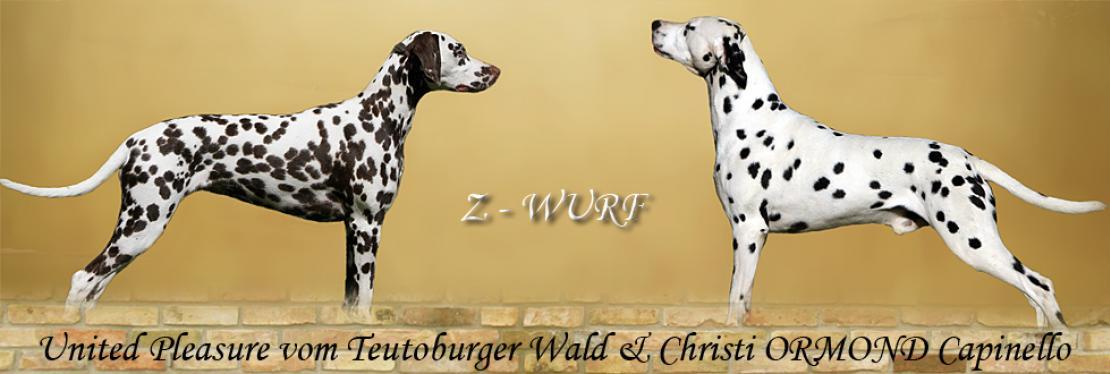 Z - Wurf vom Teutoburger Wald