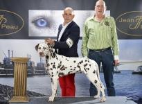 CACIB Internationale Ausstellung Goes (NL)