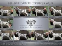 HH-Wurf vom Teutoburger Wald - Standfotos