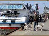 Impressionen aus dem Hamburger Hafen