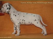 Tyron Prince vom Teutoburger Wald