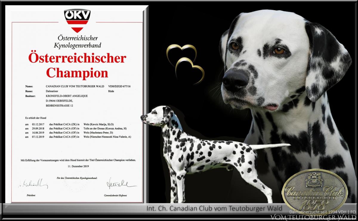 Neuer Österreichischer Champion Canadian Club vom Teutoburger Wald
