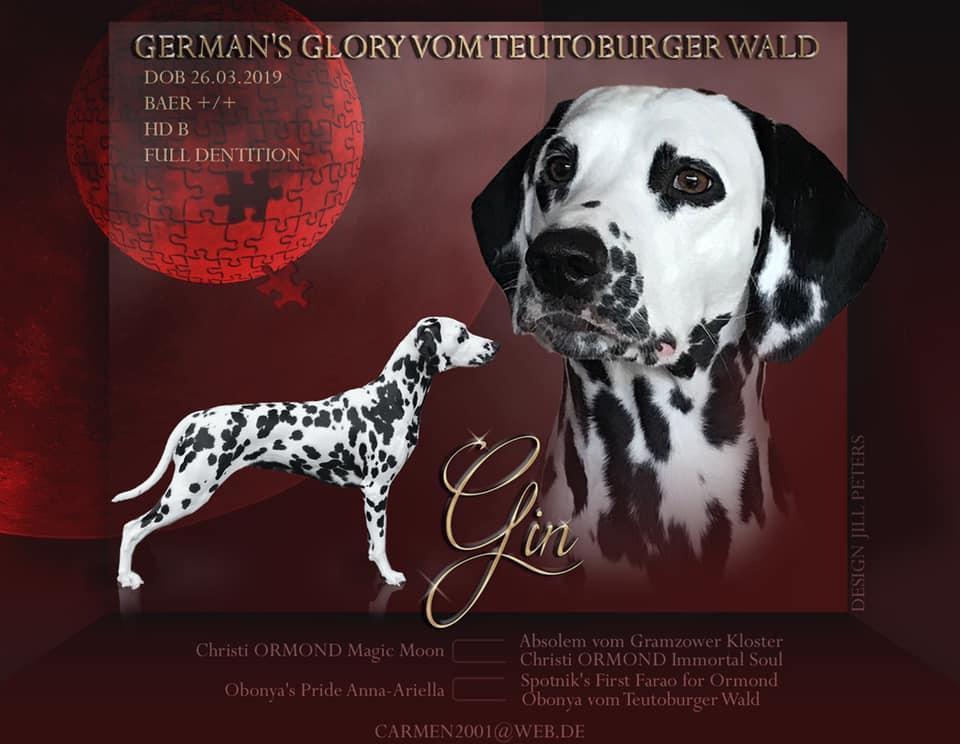 German's Glory vom Teutoburger Wald