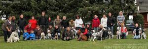 ... Doghandling Seminar: Theoretische und praktische Ausbildung