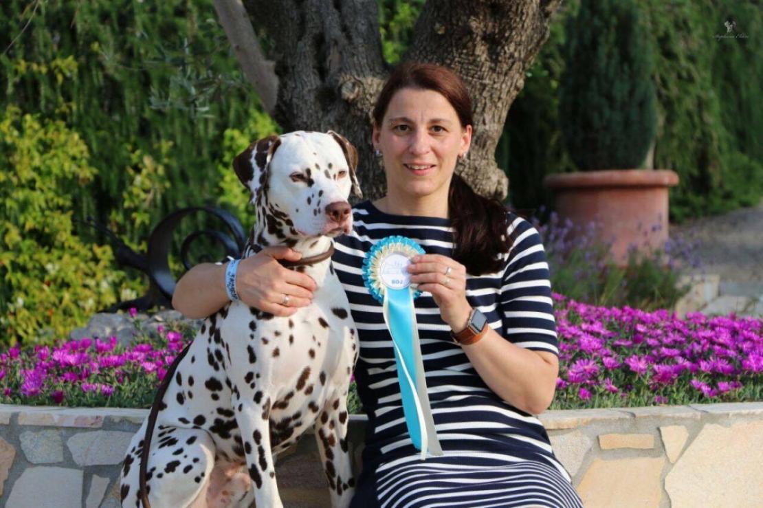 CACIB Dog Show San Marino (RSM)