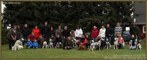 Doghandling Seminar