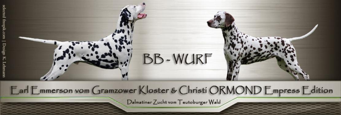 BB - Wurf vom Teutoburger Wald
