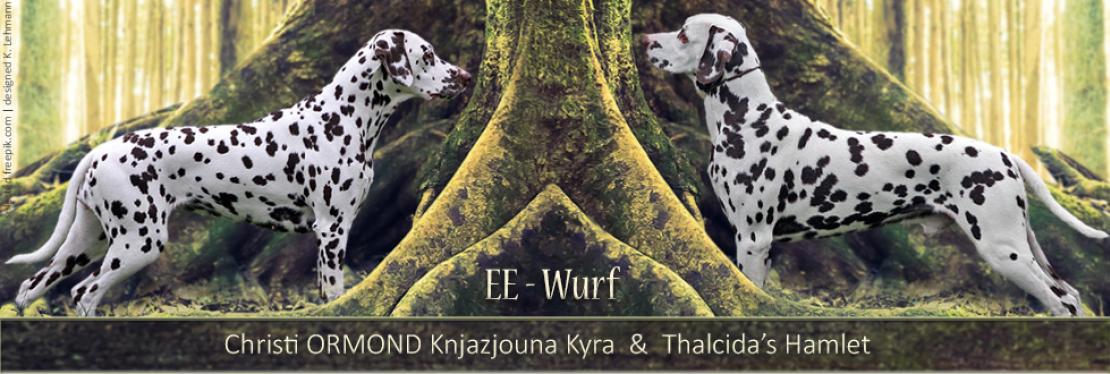 EE - Wurf vom Teutoburger Wald