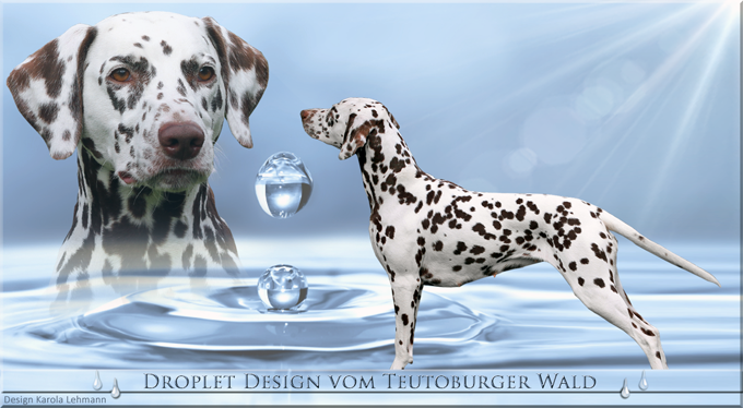 Droplet Design vom Teutoburger Wald