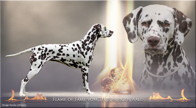 Flame of Fame vom Teutoburger Wald
