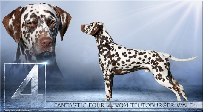 Fantastic Four vom Teutoburger Wald (2 Jahre)