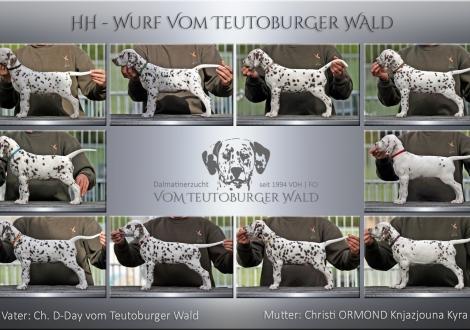 HH - Wurf vom Teutoburger Wald - Standfotos