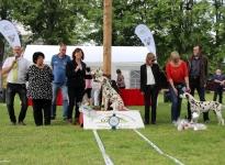 DZGD Doppel-Regionalgruppen Ausstellung Krosigk (DE) - Best of Breed – Internationaler Champion Triple X vom Teutoburger Wald