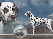 Präsentation des Deckrüden Everest Echo vom Teutoburger Wald