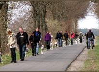 ... Rudelführer Seminar: Gemeinsamer Spaziergang mit gehorsamen Hunden