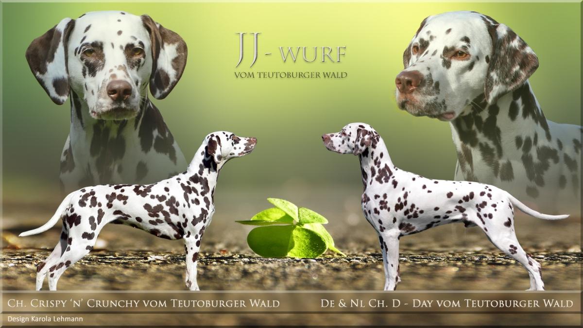 Ausführliche Infos und Fotos zum JJ-Wurf vom Teutoburger Wald - Crispy 'n' Crunchy vom Teutoburger Wald und D-Day vom Teutoburger Wald